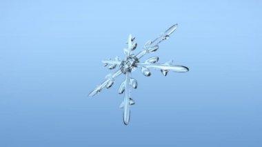 снежинка фон альфа-стиль 2 — Стоковое видео