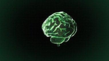 Green X-ray Brain of biology — Stock Video