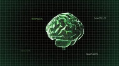 Green X-ray Brain of intelligent — Stock Video