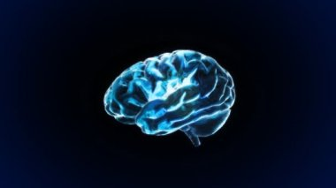 Blue X-ray Brain of biology — Stock Video