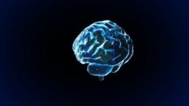 Rotation blue X-ray Brain of biology — Stock Video