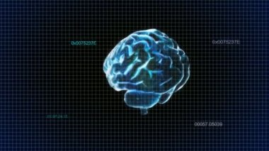 X-ray Brain time code of intelligent — Stock Video