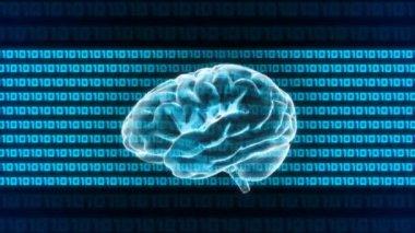 Computer X-ray Brain of technology — Vidéo