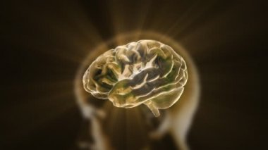Gold flare of X-ray Brain technology — Stock Video