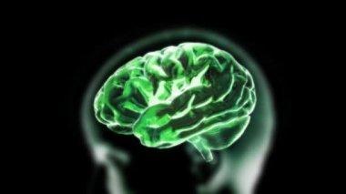 Zoom en cerebro de rayos x con la célula de la biología — Vídeo de stock
