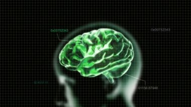 Green X-ray Brain with time code of biology — Stock Video