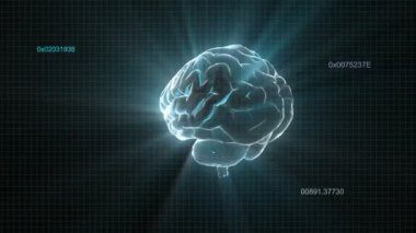 X-ray Brain of technology timecode — Stock Video