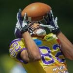 Vikings vs. Golddiggers. Laurinho Walch — Stock Photo #30815347