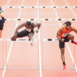 Gugl Indoor 2013. Omo Osaghae — Stock Photo