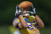 Vikings vs. Golddiggers. Laurinho Walch — Stock Photo
