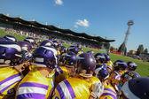 Vikings vs. Panthers — Stock Photo