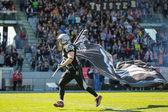Raiders vs. Dragons — Stock Photo