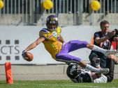 Vikings vs panteras — Foto de Stock