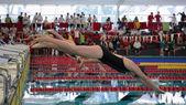 Stroeck Qualifying 2014 — Стоковое фото