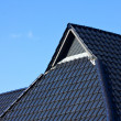 Royalty-Free Stock Photo: Roof..........