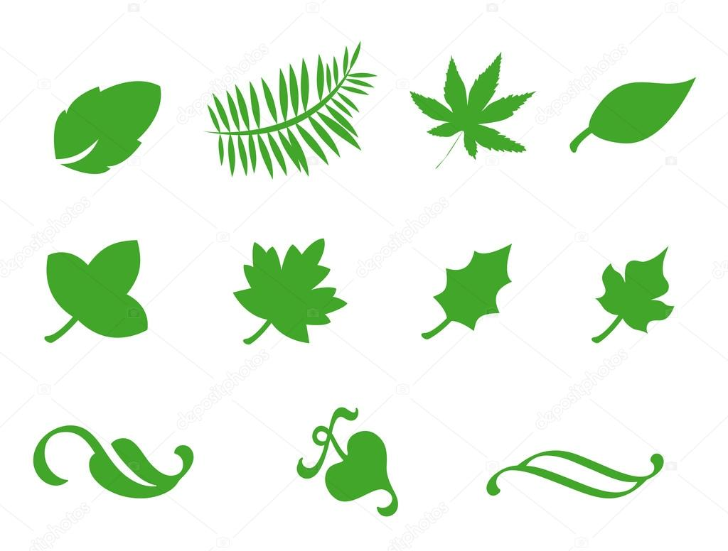 Leaf Icon Leaf Icons Isolated on a White