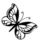 Butterfly.isolated. — 图库照片