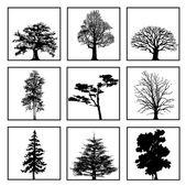 Conjunto de árboles. — Foto de Stock