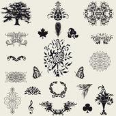 Kalligrafische design-elemente. — Stockfoto