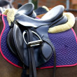 Saddle with stirrups on a back of a horse — Stock Photo