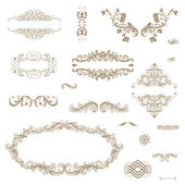 Vector set of decorative floral elements.... — Stock Photo