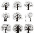 Collection of trees silhouettes — Stock Vector #12233279