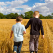 Stock Photo: Two brothers holding hands in wheat fields