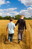 Two brothers holding hands in the wheat fields — Stock Photo