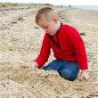 Little boy playing on the beach in autumn — Stock Photo #13168838