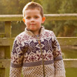 Little boy smiling in the evening Autumn sun - Stock Photo