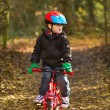 Little boy riding his bike through woodland trail — 图库照片