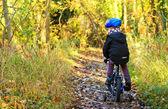 Little boy riding his bike through woodland trail — Stock Photo