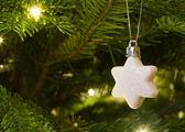 Julstjärna hänger på julgranen — Stockfoto