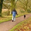 Stock Photo: Mwalking dogs in countryside