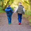 Royalty-Free Stock Photo: Brothers holding hands on a countryside path