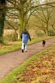 Man walking dogs in the countryside — Stock Photo