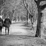 Senior couple walking through the woods — Zdjęcie stockowe #21303701