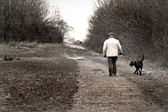 Old man walking the dog — Stock Photo