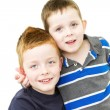 Stockfoto: Cheeky brothers standing together