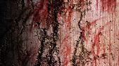 Grunge Bloody Wall — Stock Photo