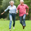Active seniors — Stock Photo #12228021