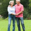 Senior couple in love — Stock Photo #12228027
