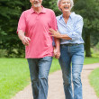 Walking in the park — Stock Photo #12228043