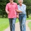 Walking in the park — Stock Photo