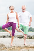 Active senior couple — Stock Photo