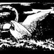 Graphic illustration of a swan - Stok Vektör