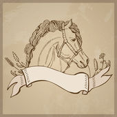 Hand drawing of a horse — Stock Vector