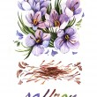 Stock Photo: Watercolor Saffron