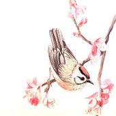 Vector watercolor spring bird — Stock Vector
