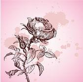 Ilustração vetorial com rosa vintage — Vetor de Stock
